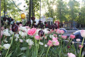 jardines de tivoli